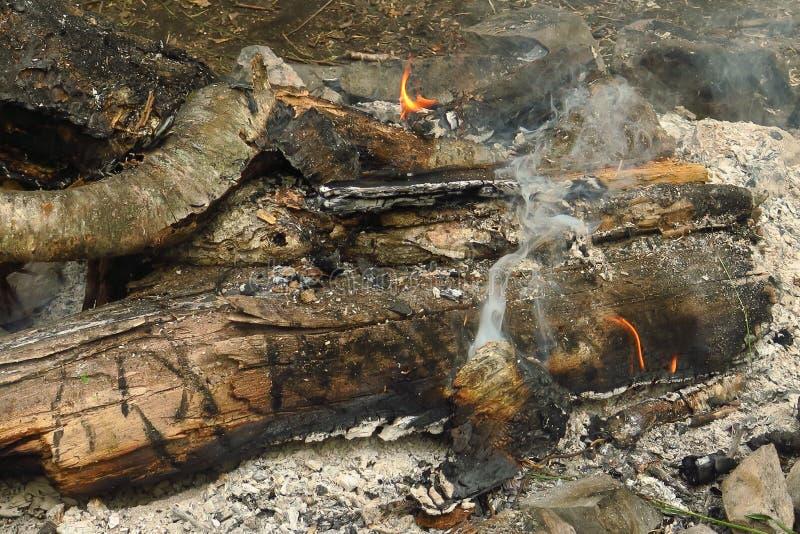 Bois brûlant dans le feu, divorcé par des touristes photos libres de droits