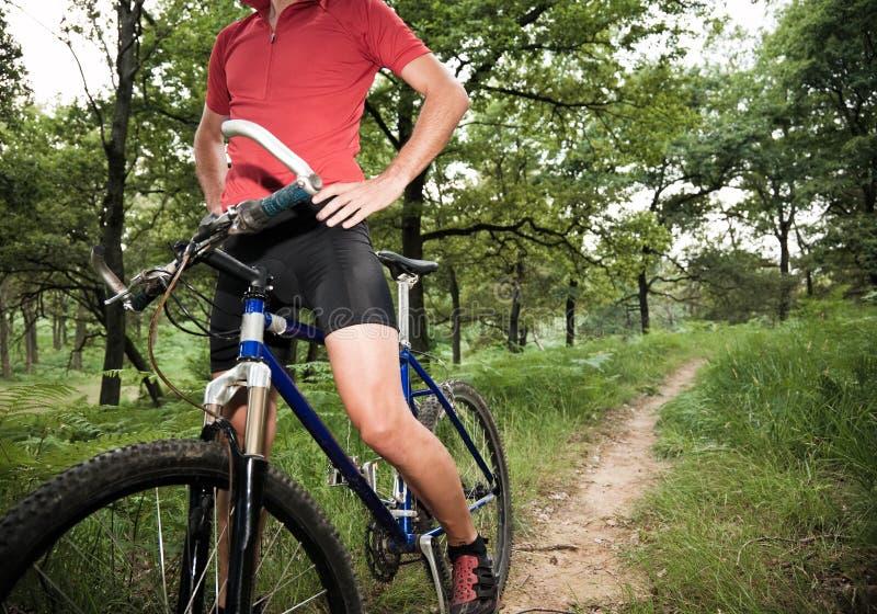 bois d'arrêt de cycliste photos stock