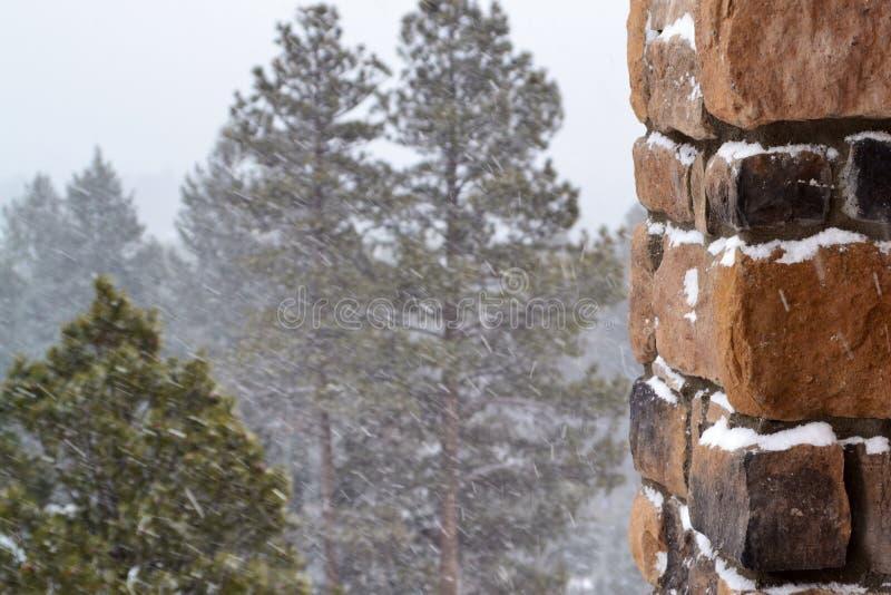 Bois d'hiver photo libre de droits