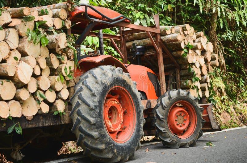 Bois de chargement de camion dans la forêt, naturel en bois frais sciée image stock