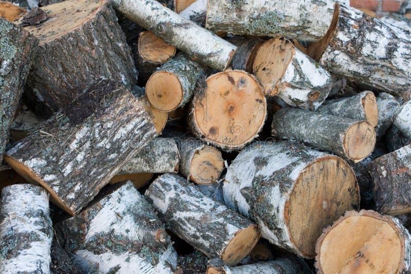 Bois de chauffage de bouleau photo stock image du tomb arbre 6988358 - Arbre fruitier comme bois de chauffage ...