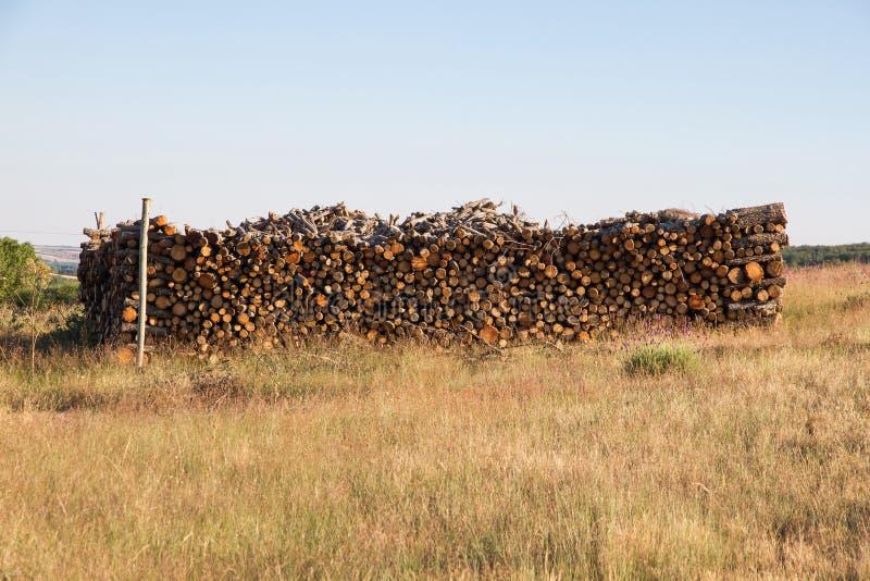 Bois de chauffage de chêne coupé et empilé dans Bush photographie stock