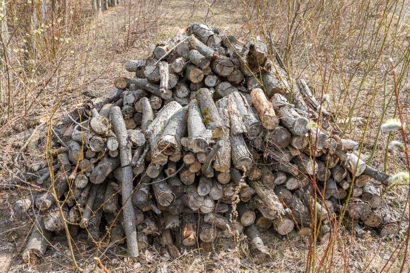 Bois de chauffage, empil? dans un tas de bois apr?s la neige d'hiver image stock