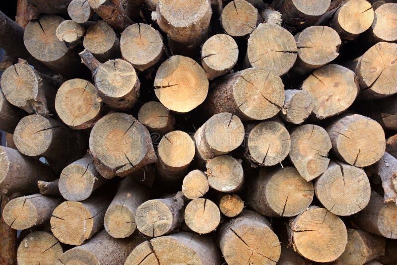Bois de chauffage empilé Fond de bois de chauffage Fond en bois photographie stock libre de droits