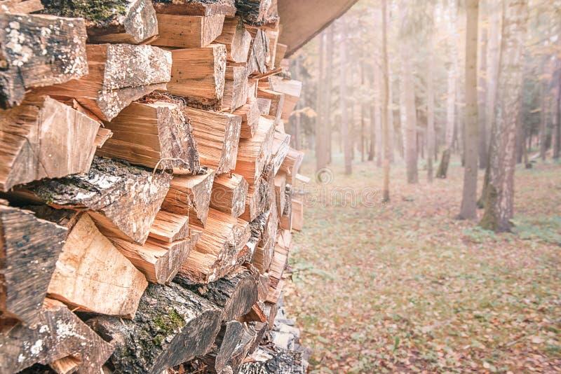 Bois de chauffage soigneusement plié dans la forêt recouverte de feuilles d'automne jaunes photo libre de droits