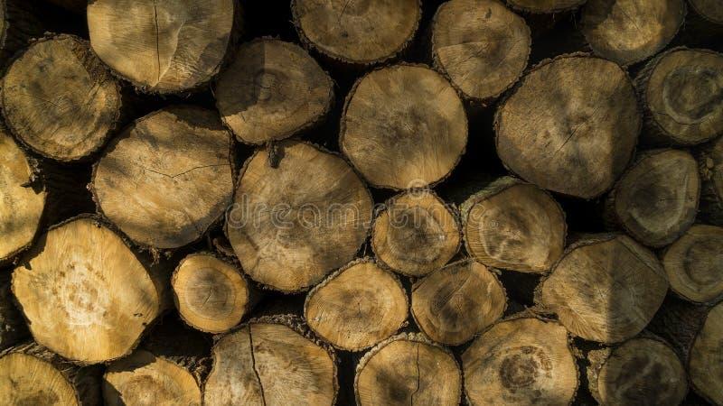 Bois de construction abattu empilé  Exploitation de sylviculture d'arbre image libre de droits