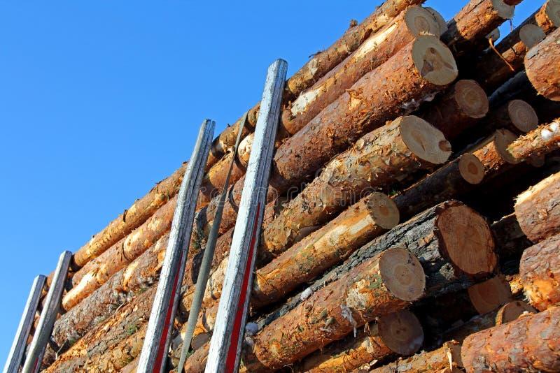 Bois de construction de pin sur la remorque de enregistrement images libres de droits