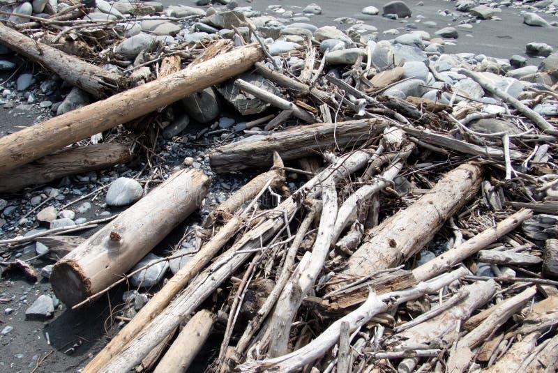 Bois de flottage sur une berge après une inondation et des hautes eaux images libres de droits