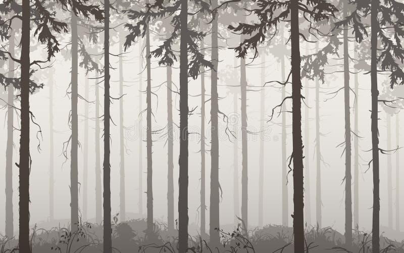 Bois de pin illustration libre de droits