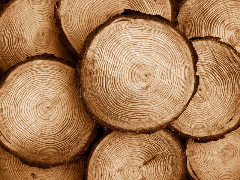 Bois de pin scié image libre de droits