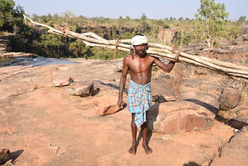 Bois de transport et hache d'un homme tribal bastar photographie stock libre de droits