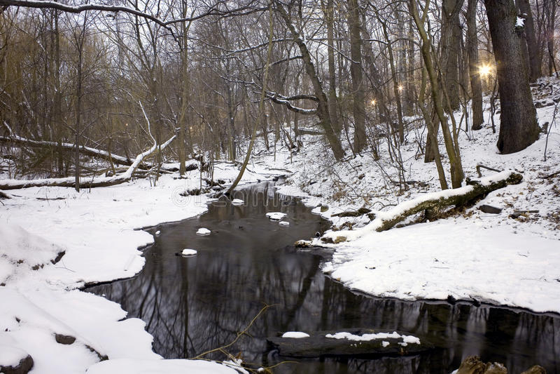 Bois du nord Central Park NY photographie stock libre de droits