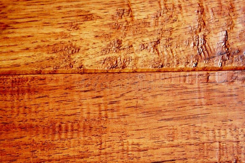 Bois dur d'hickory photos libres de droits
