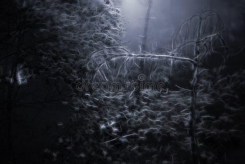 Bois effrayants de Digital illustration libre de droits