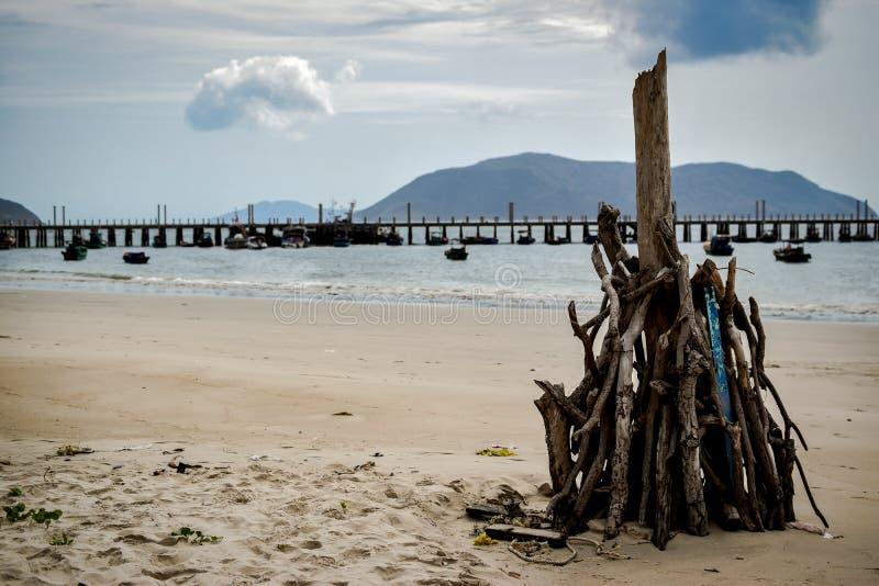 Bois empilé à la plage du dao d'escroquerie, Vietnam image stock