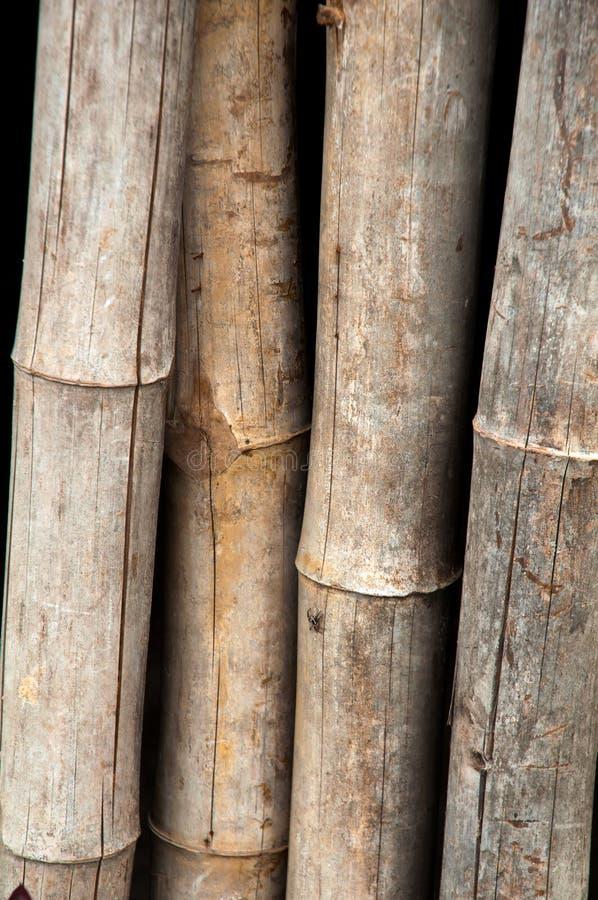 Bois En Bambou De Frontière De Sécurité - Texture Images stock