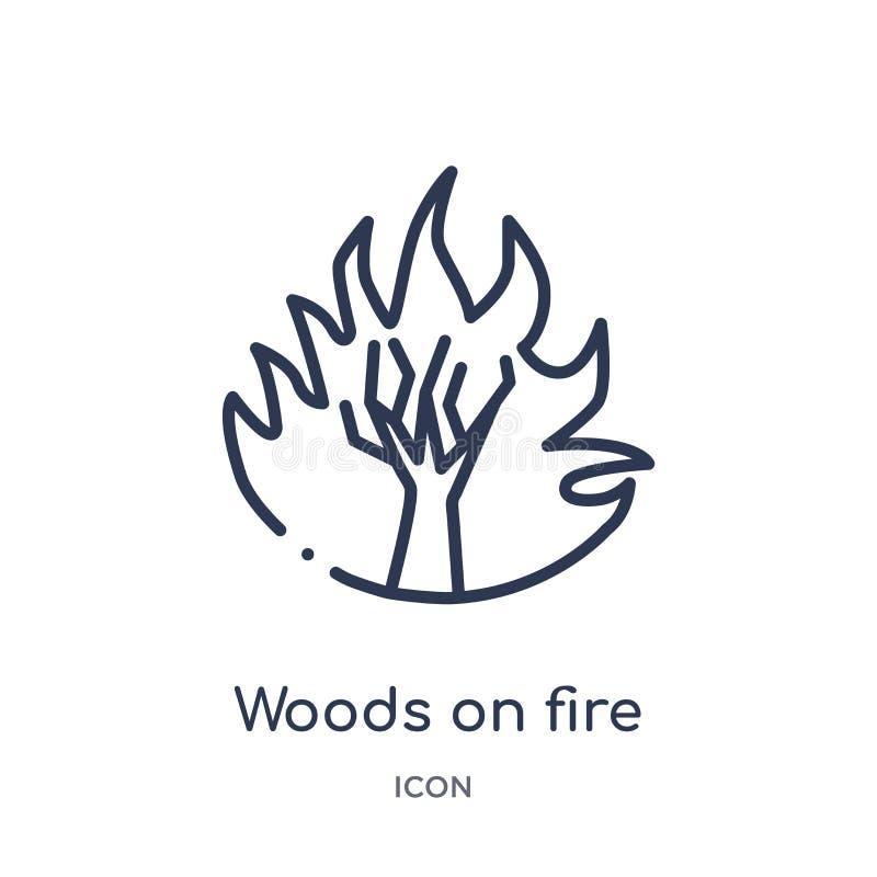 Bois linéaires sur l'icône du feu de la collection d'ensemble de météorologie Ligne mince bois sur l'icône du feu d'isolement sur illustration de vecteur