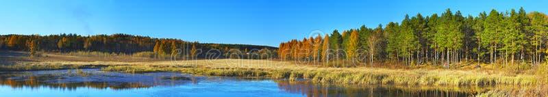 Bois, nature de fleuve en Extrême Orient image stock