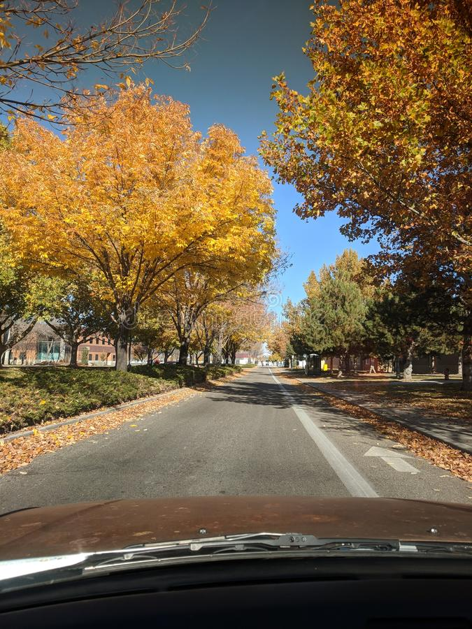 Boise-Fall stockfotografie
