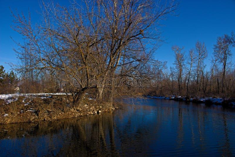 Boise River i vinter med några lappar av snö fotografering för bildbyråer