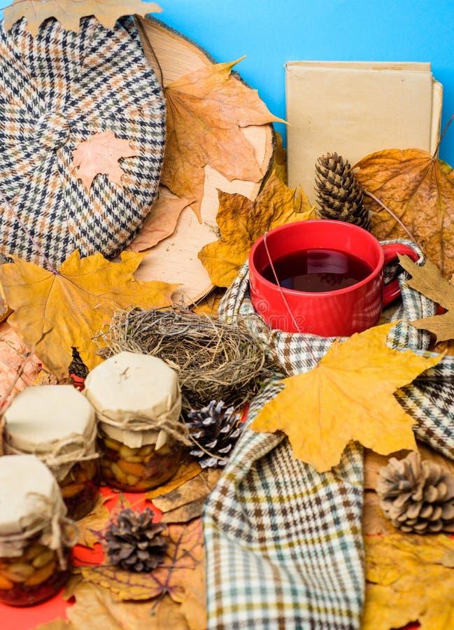 Boisson automnale avec les bonbons naturels faits maison L'écharpe de chapeau et les bonbons naturels à miel dans des pots s'appr images stock
