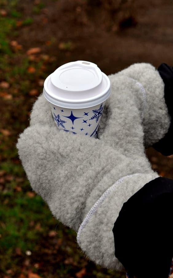 Boisson chaude en hiver photo libre de droits