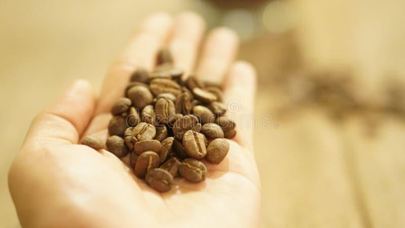 Boisson de café de grain de café pour le café photo libre de droits