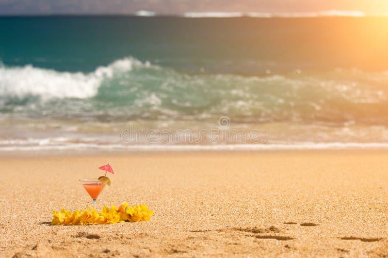 Boisson et fleur tropicales Lei sur la plage Shoreline image libre de droits