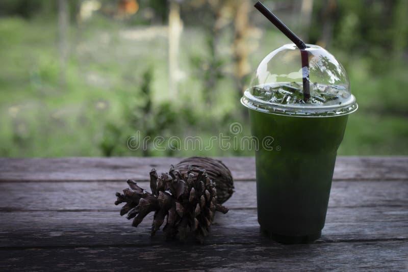 Boisson glacée de citron de miel de thé vert avec les cônes secs de pin sur la table en bois sur le fond vert de nature photos libres de droits