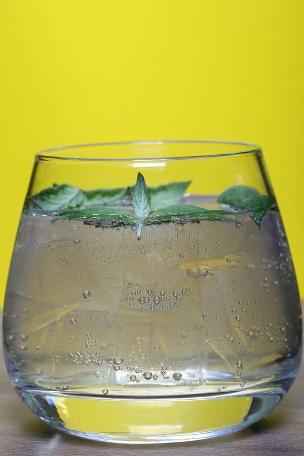 Boisson régénératrice avec des bulles de gaz Nalit dans un verre transparent Il a étendu la glace écrasée D?cor? des feuilles en  images libres de droits