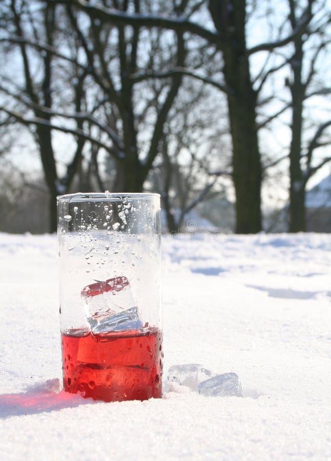 Boisson rouge et glaciale dans la neige image stock