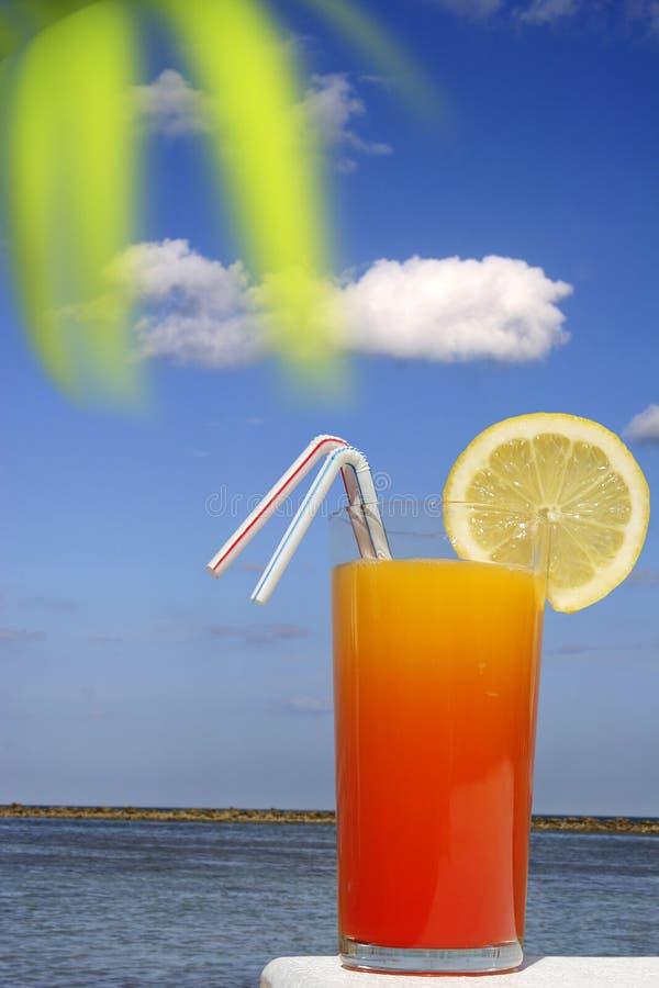 Download Boisson tropicale image stock. Image du beachfront, lame - 2130525