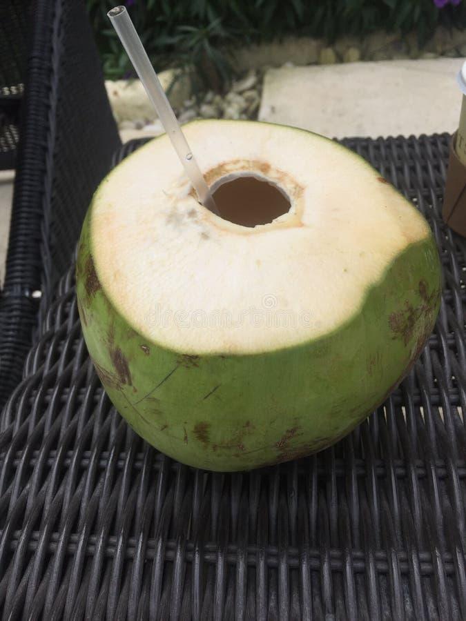 Boisson tropicale de l'eau de noix de coco Jamaïque images stock