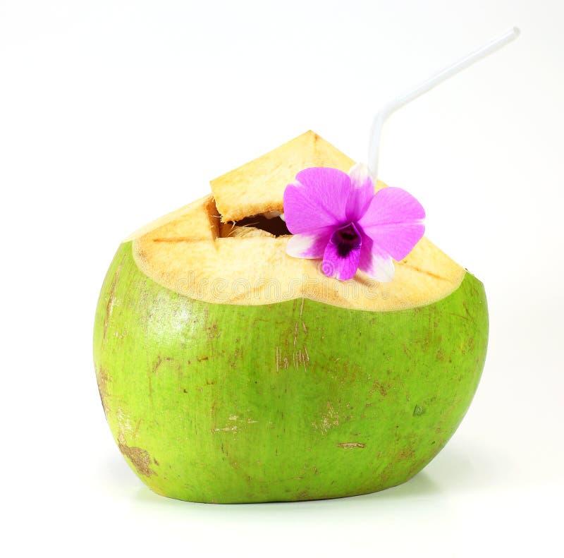Boisson verte de l'eau de noix de coco image libre de droits