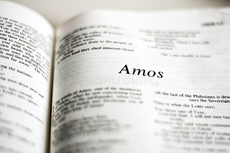 Bok av Amos royaltyfri bild