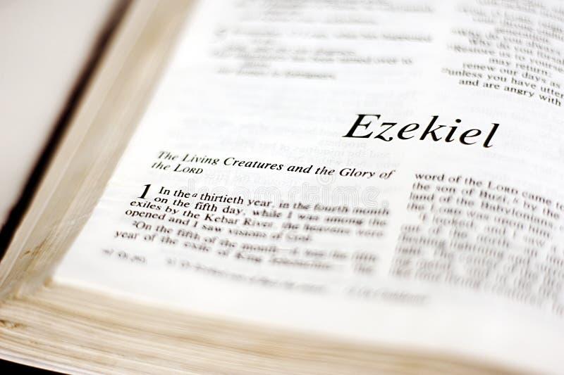 Bok av Ezekiel royaltyfria bilder