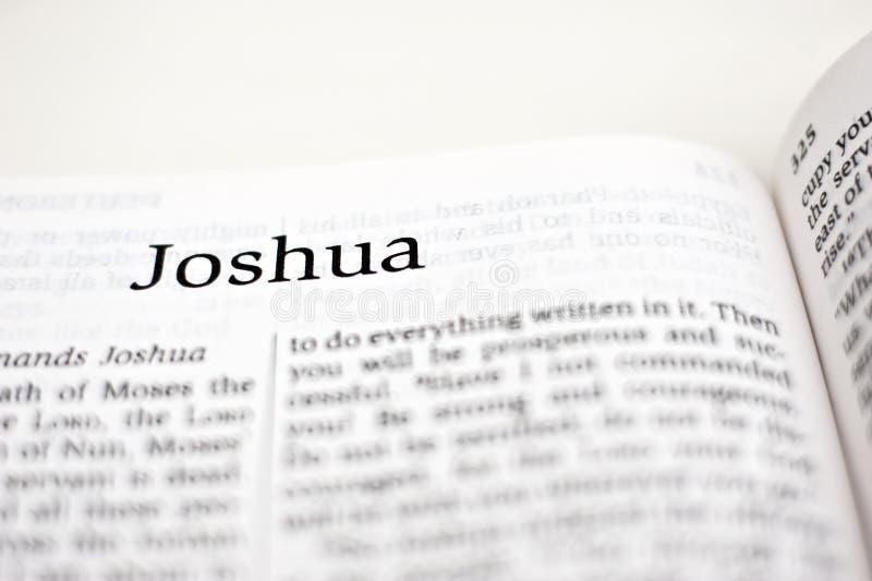 Bok av Joshua royaltyfri fotografi