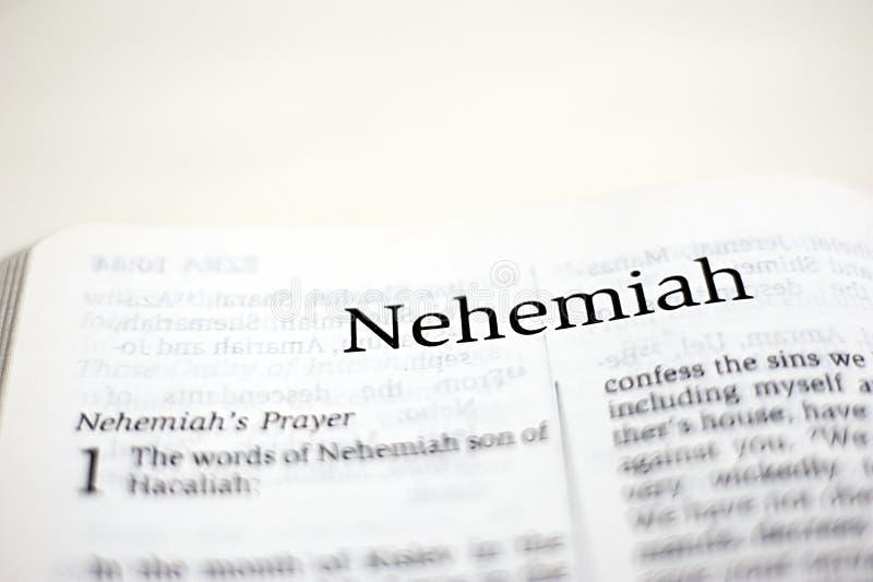 Bok av Nehemiah royaltyfri bild
