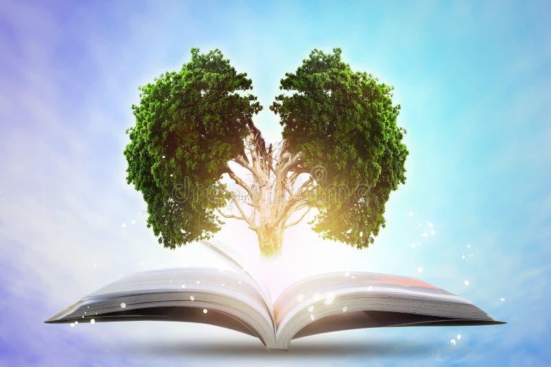 Bok av växande kunskap med det stora trädet för hjärnor royaltyfri fotografi