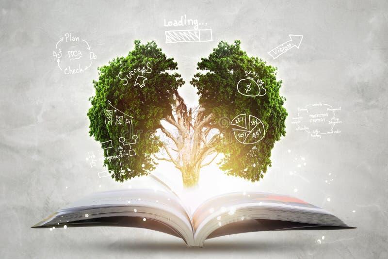 Bok av växande kunskap med det stora trädet för hjärnor arkivfoton