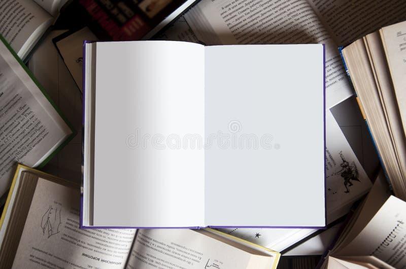 Bok bland böcker arkivbilder