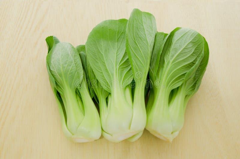 Bok choi frais vert de chou de chine image stock