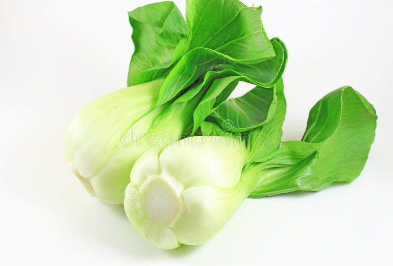 Bok Choy. Chinese cabbage on white background royalty free stock photos
