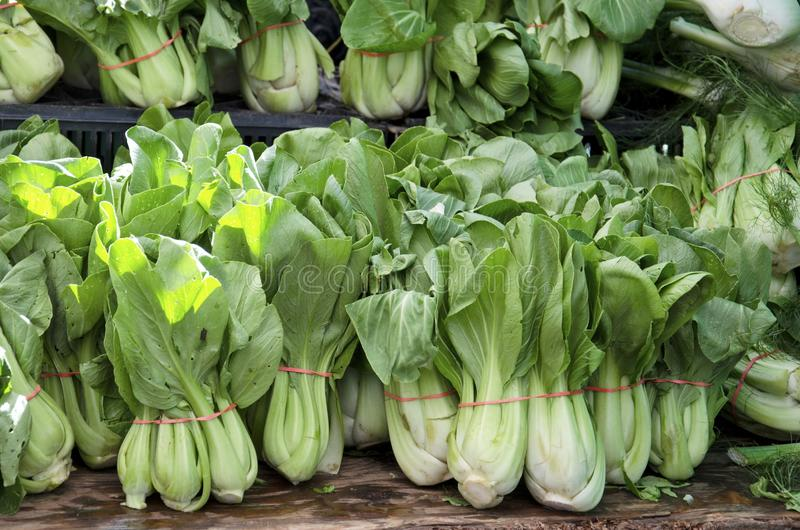 Bok Choy. Bundles of fresh bok choy for sale in the outdoor farm market stock photography