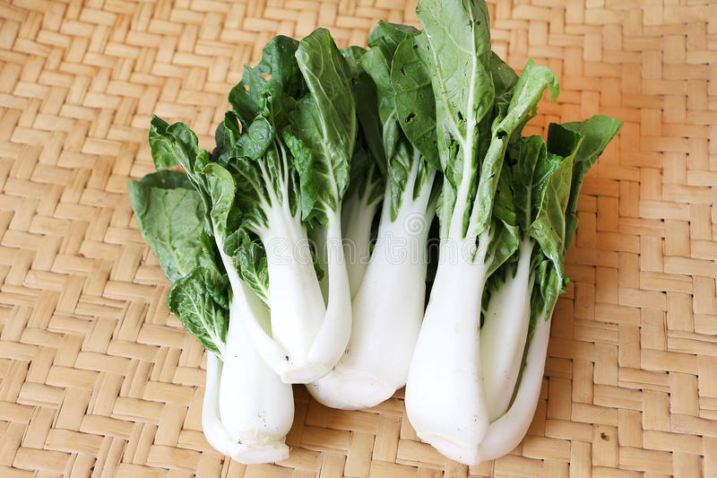 Bok choy or Chinese cabbage. On Bamboo mat royalty free stock images