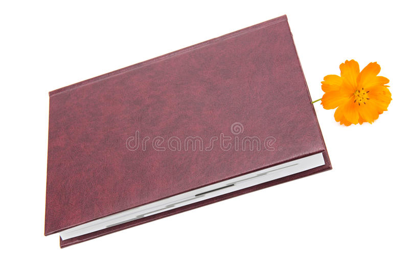 Bok och blomma royaltyfri foto