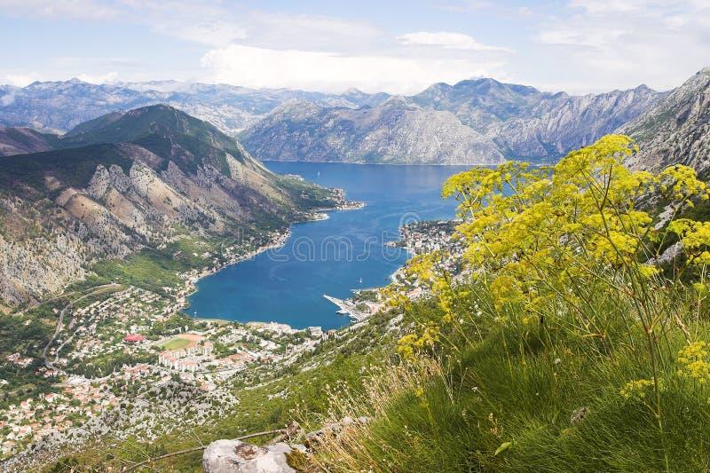 Boka Kotorska bay panorama. Boka Kotorska bay, Kotor, Montenegro, panorama from the mountain above royalty free stock photos