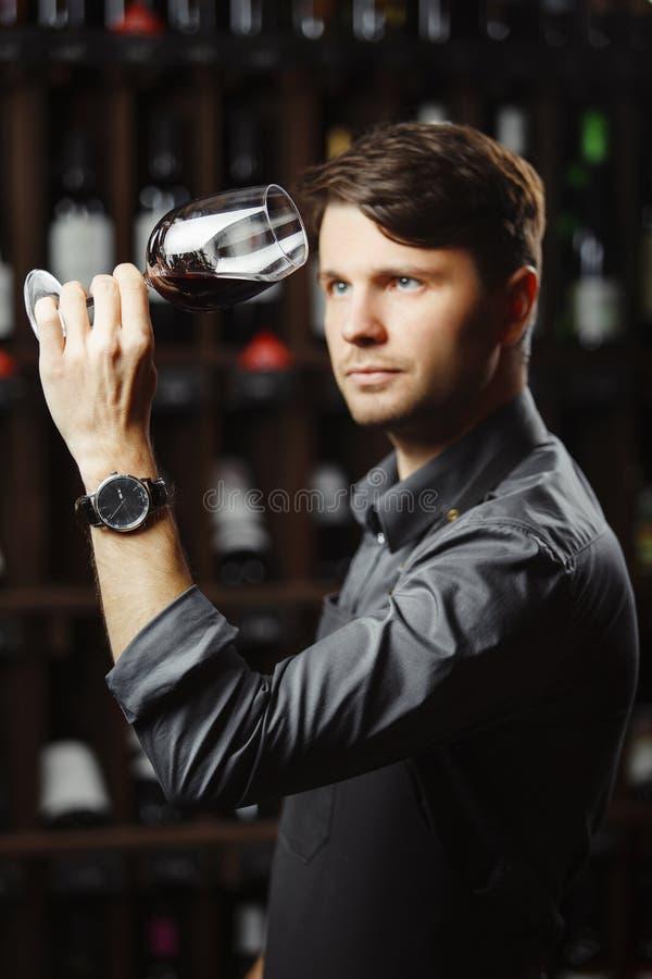 Bokal del vino rojo en el fondo, sommelier masculino que aprecia la bebida imagen de archivo libre de regalías