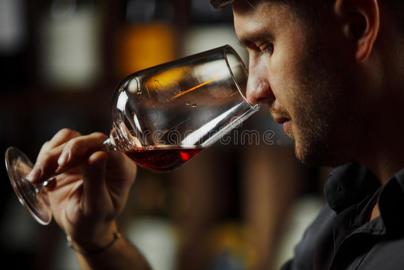 Bokal del vino rojo en el fondo, sommelier masculino que aprecia la bebida imágenes de archivo libres de regalías