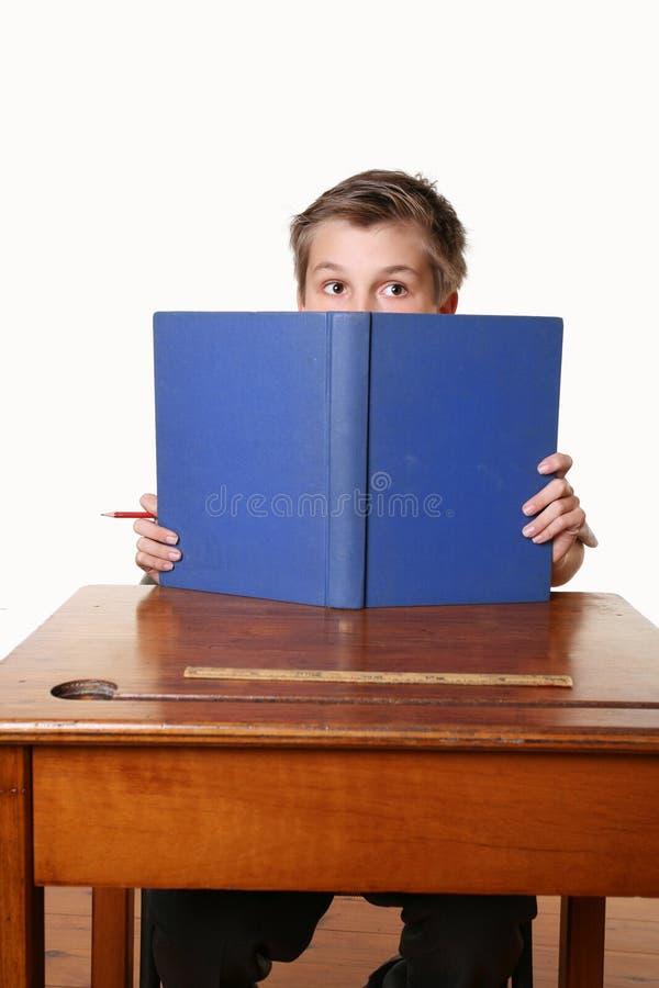 Bokbokmalavläsning Royaltyfri Fotografi
